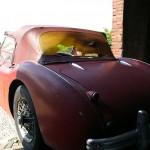 Austin Healey 100 BN1 Origineel 3